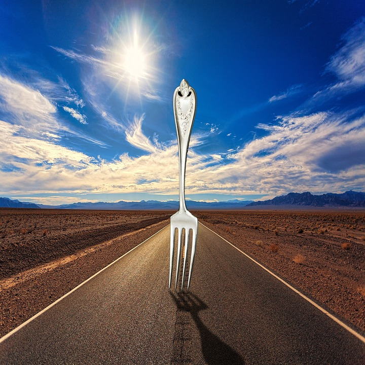 fork-in-the-road-3674578_960_720pixabay
